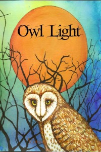 Maybe6_owl_light_cover.199195526_std